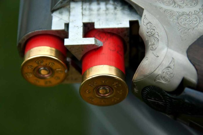 Gun Canon Cartridges Hunting Ammunition Weapon