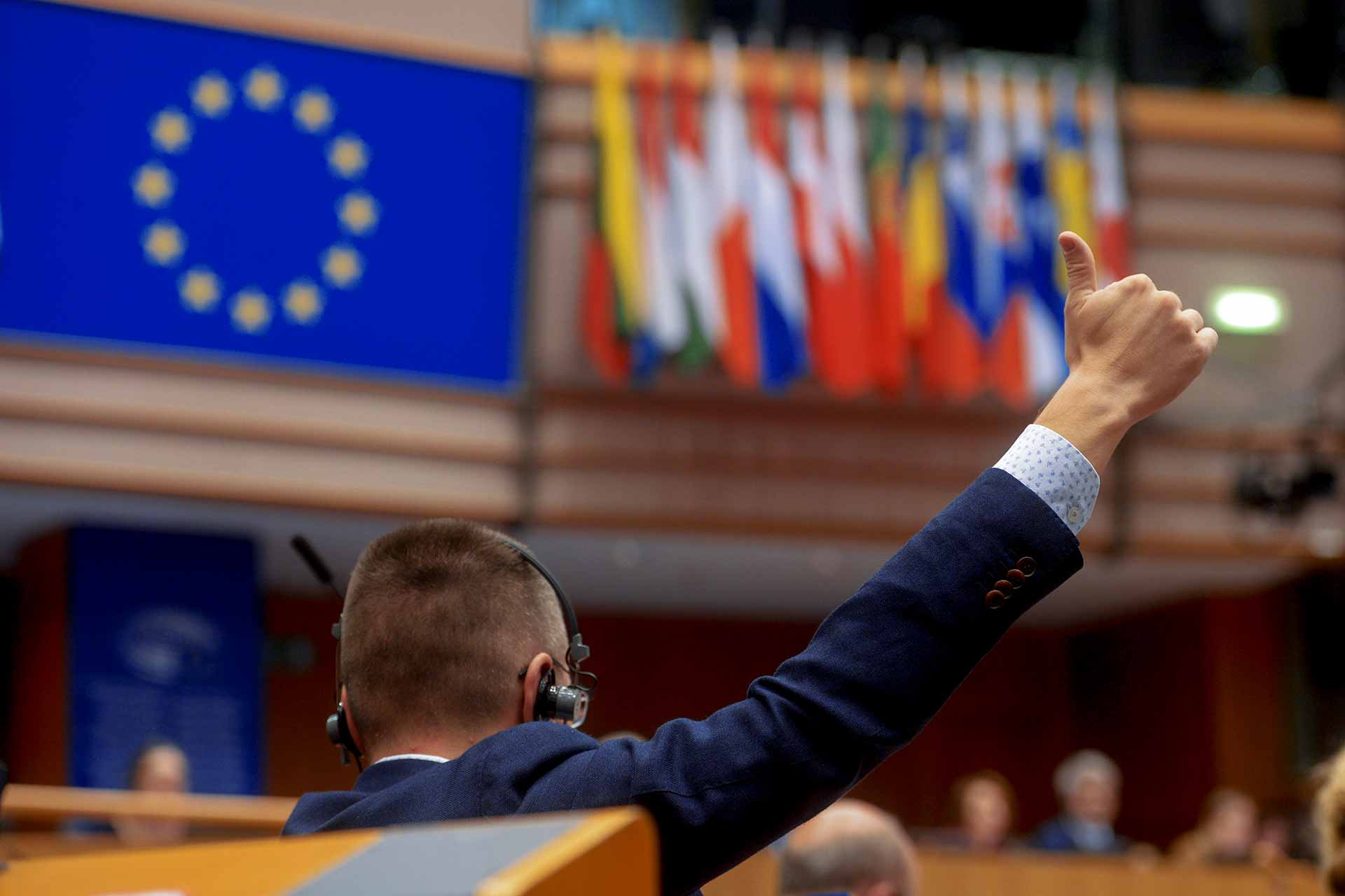European Parliament Plenary MEPs VOTE