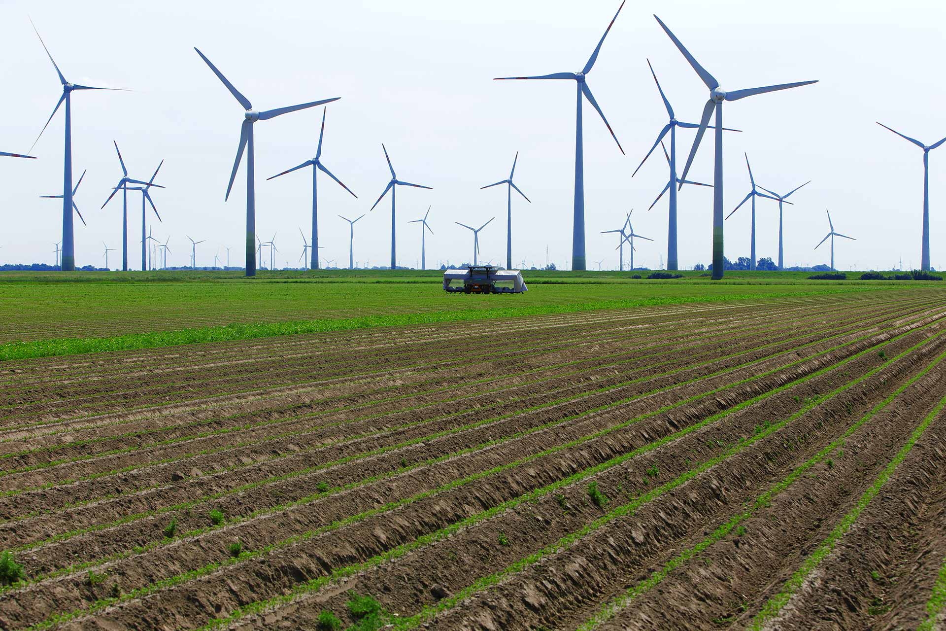 Agriculture farm wind power