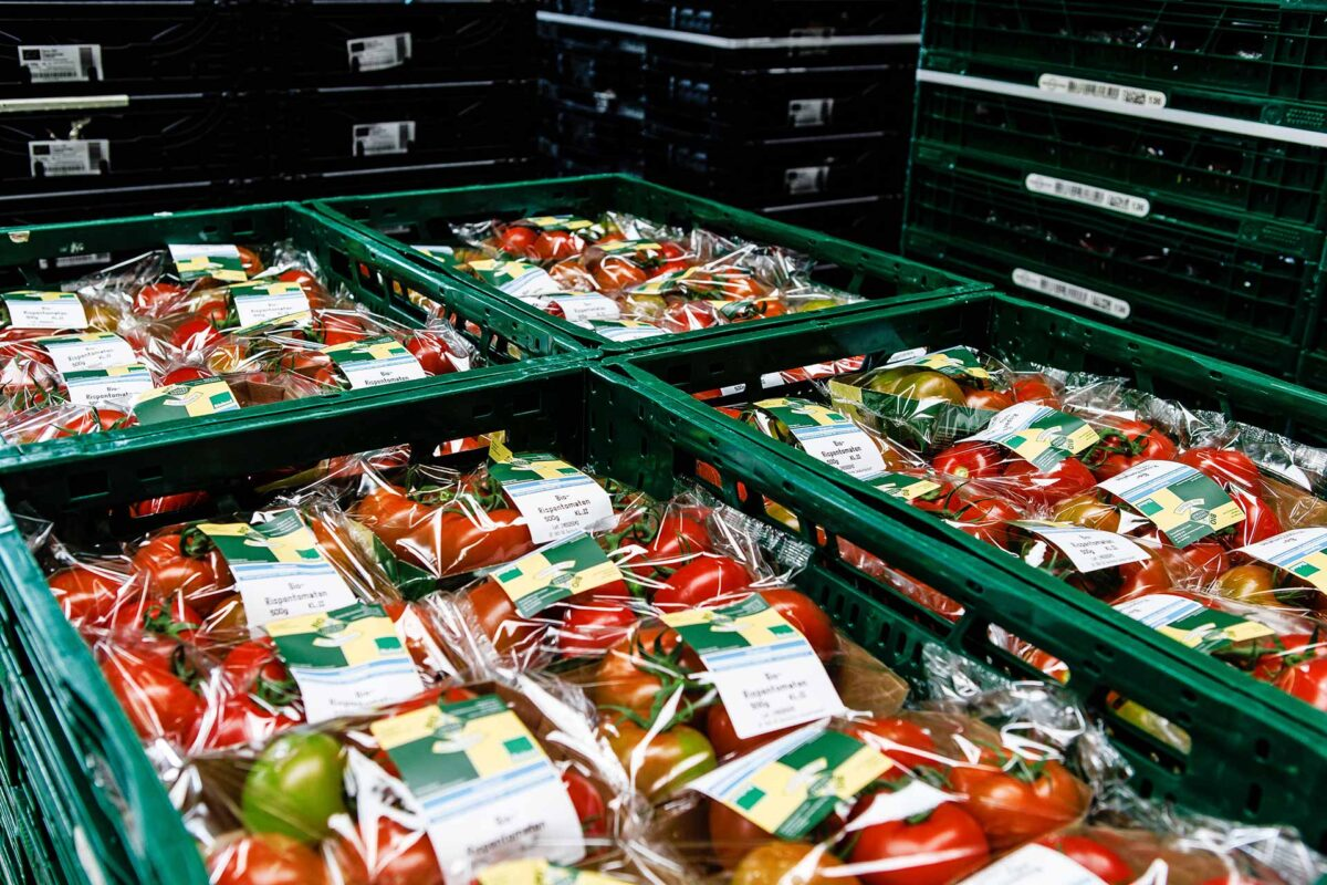 Agriculture - Packaged organic tomatoes in crates in the delivery hall of Westhof Bio-farm - Bio farm Agriculture