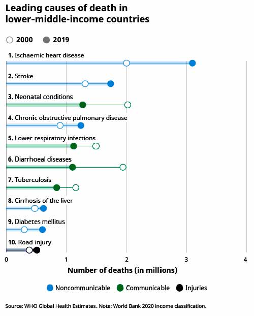 Leading causes of death by income group 2