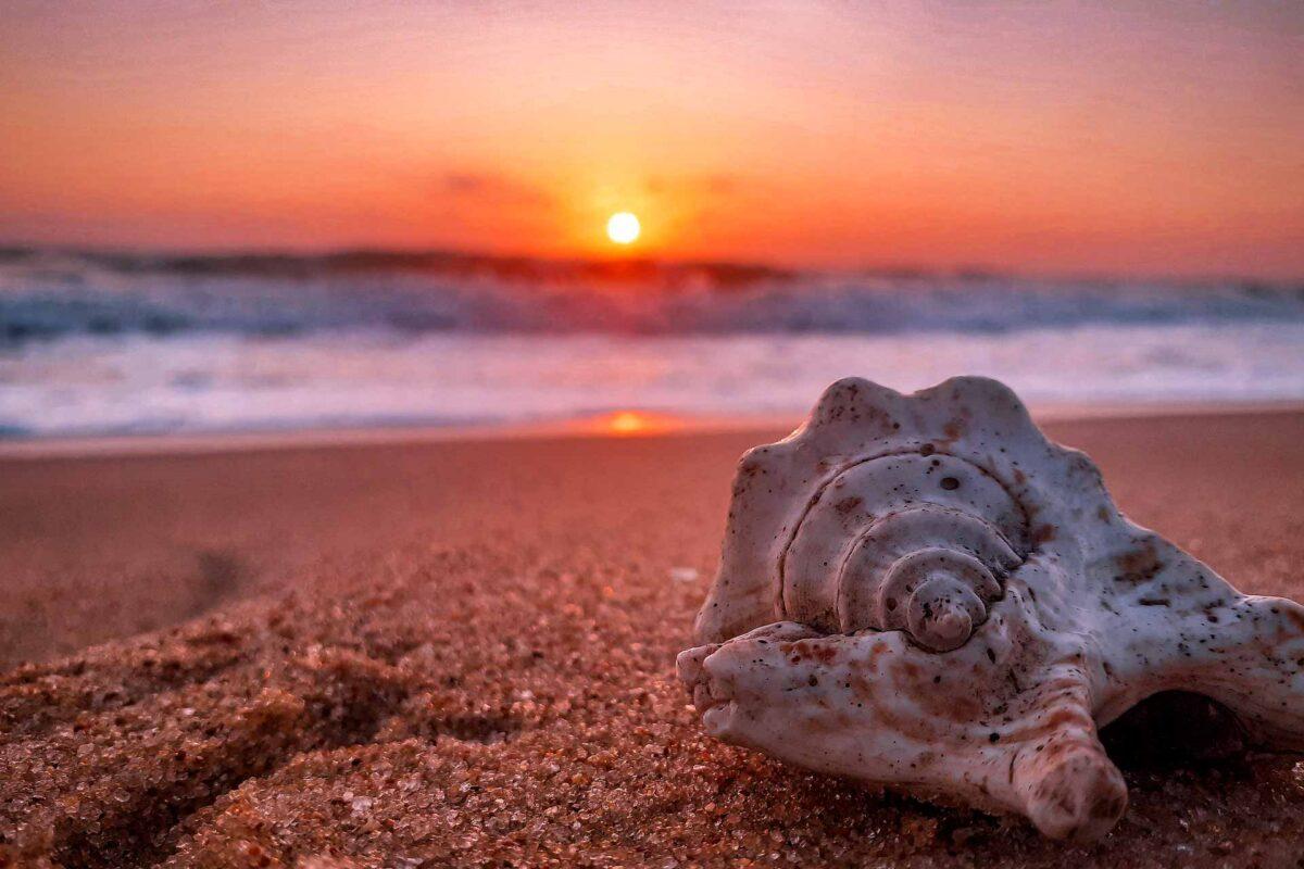 sunrise sunset ocean sea summer