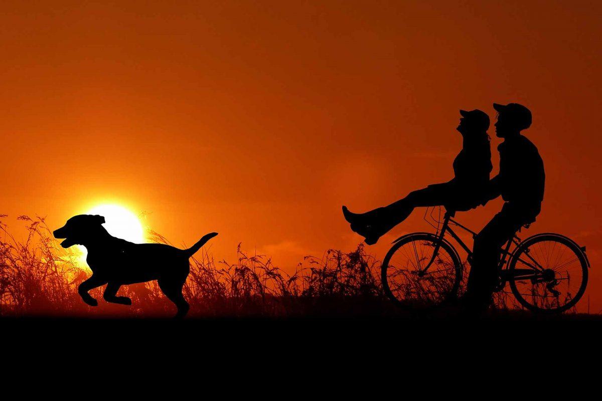 sunset-Summer holidays couple