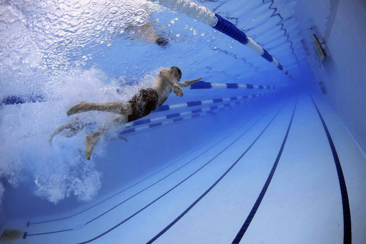 swimmers swimming-pool