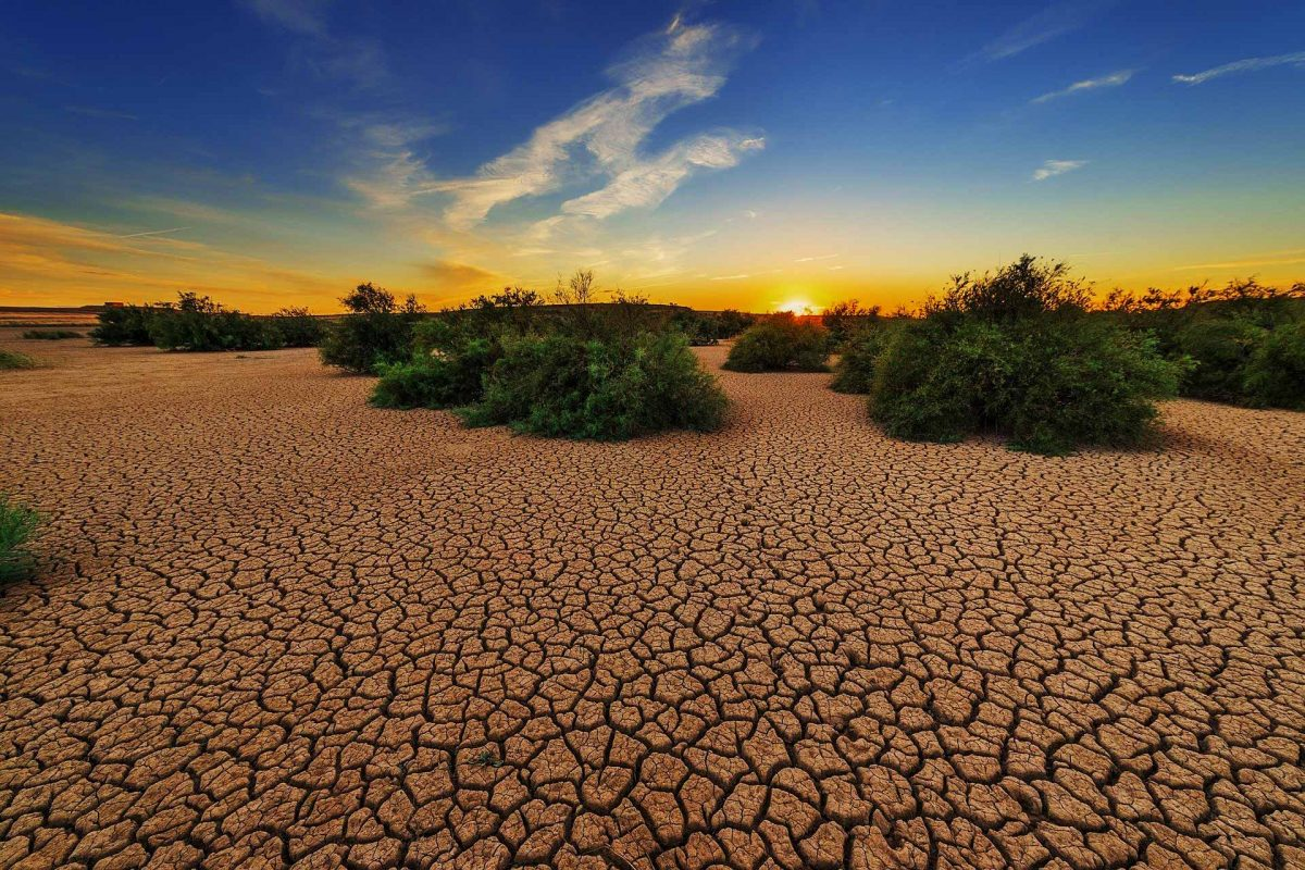 Dessert dry drought ground